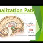 Dr.Padma K Bhat,Webinar on World Mental Health Day 2021